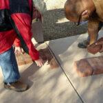 Socorro veterans recognized in brick