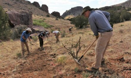 Volunteers build a new trail at the Box