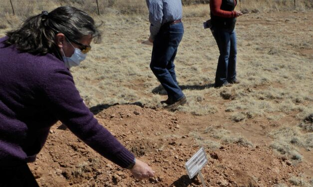Cremains laid to rest