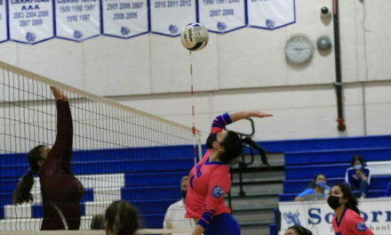 Lady Warriors sweep Lady Steers in both matches this season