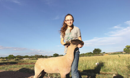4-H kids see hard work pay off
