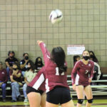 Steers volleyball tourney back on the court