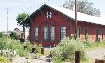 2021 Election: Village of Magdalena
